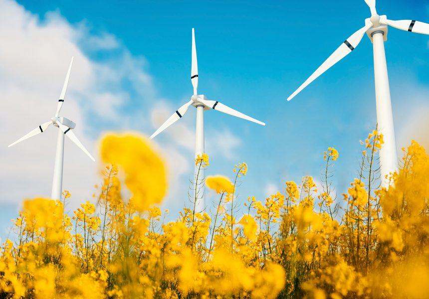 Duitsland zet in op waterstof: lucratief voor Nederland!
